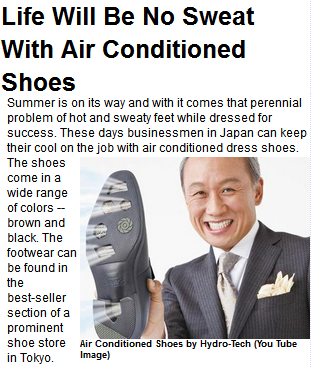 [Image: JapaneseAirConditionShoes.png]